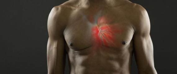 HEALTH HUMAN HEART