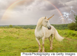 How Corbyn On A Rainbow Unicorn Won The Election (Kinda)