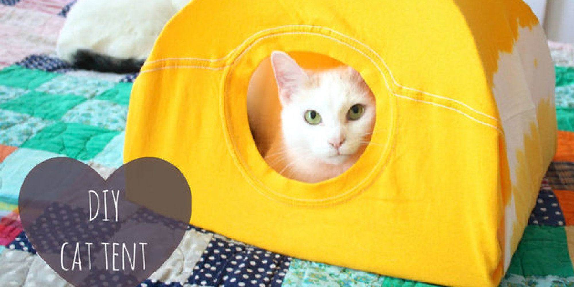 voici comment fabriquer une tente pour chat avec un vieux. Black Bedroom Furniture Sets. Home Design Ideas