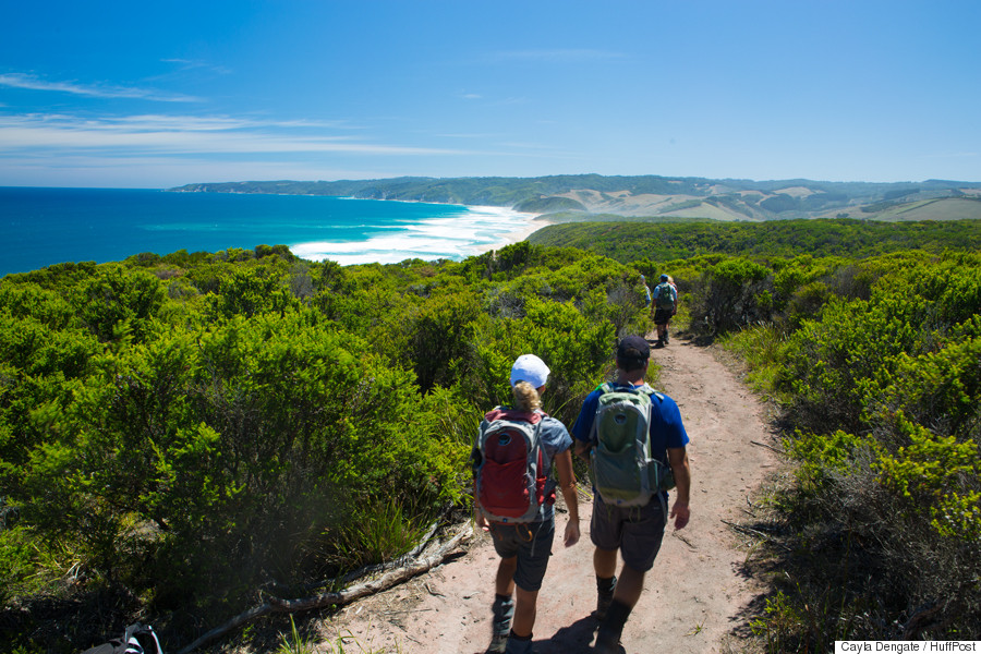 12 apostles walking tour otways