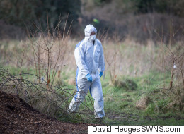Severed Human Foot Found By Dog Walker In Park