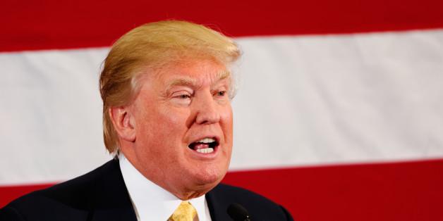 Newt Gingrich Wrote an Essay Called  Understanding Donald Trump