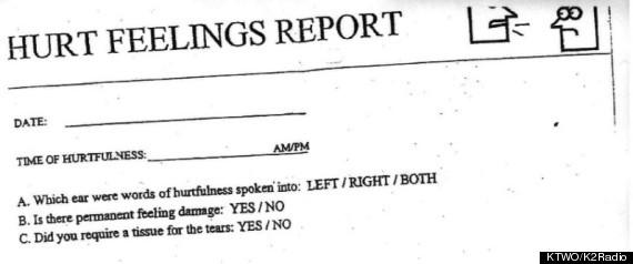 HURT FEELINGS REPORT