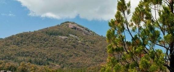 pine mountain victoria