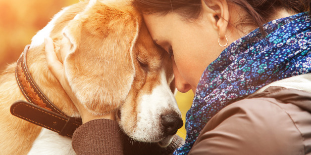 How a Dog Helped Me Manage My Anxiety and Depression.