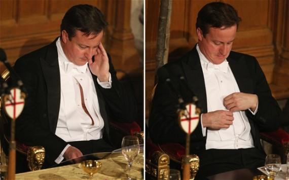 david cameron banquet