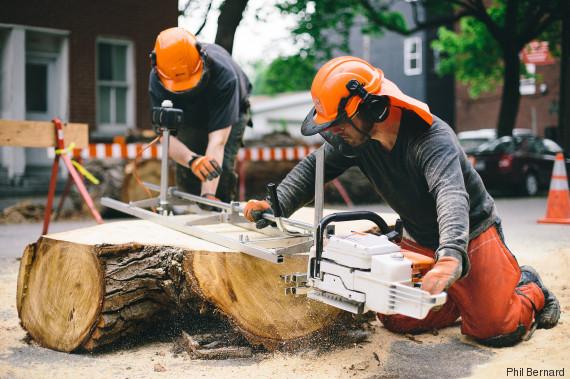 recyclage arbres urbains