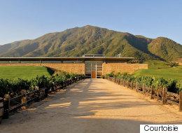 Soyez aux anges avec les vins de la maison <em>Montes</em> du Chili