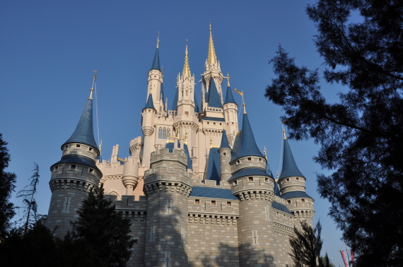 the castle in the magic kingdom