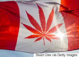 The 8 Ways Canada Can Legalize Marijuana