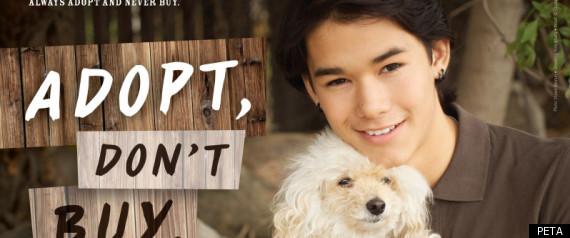 BOOBOO STEWART PETA AD