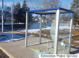 Italian Photographer Charged With Smashing Edmonton Bus Shelters