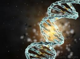Pour 999$ US, votre génome disponible sur une application