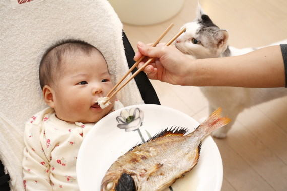 baby eating fish