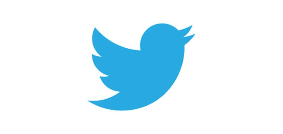 twitter oiseau