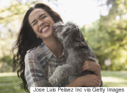 14 choses à considérer avant d'adopter un animal