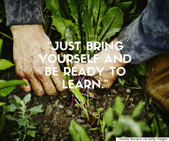 Community Gardens The Great Benefits Of Joining One