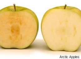 B.C. Company's Freaky Non-Browning Apples Soon To Be Sold In U.S.
