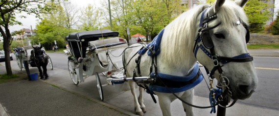 how to draw a horse and carriage