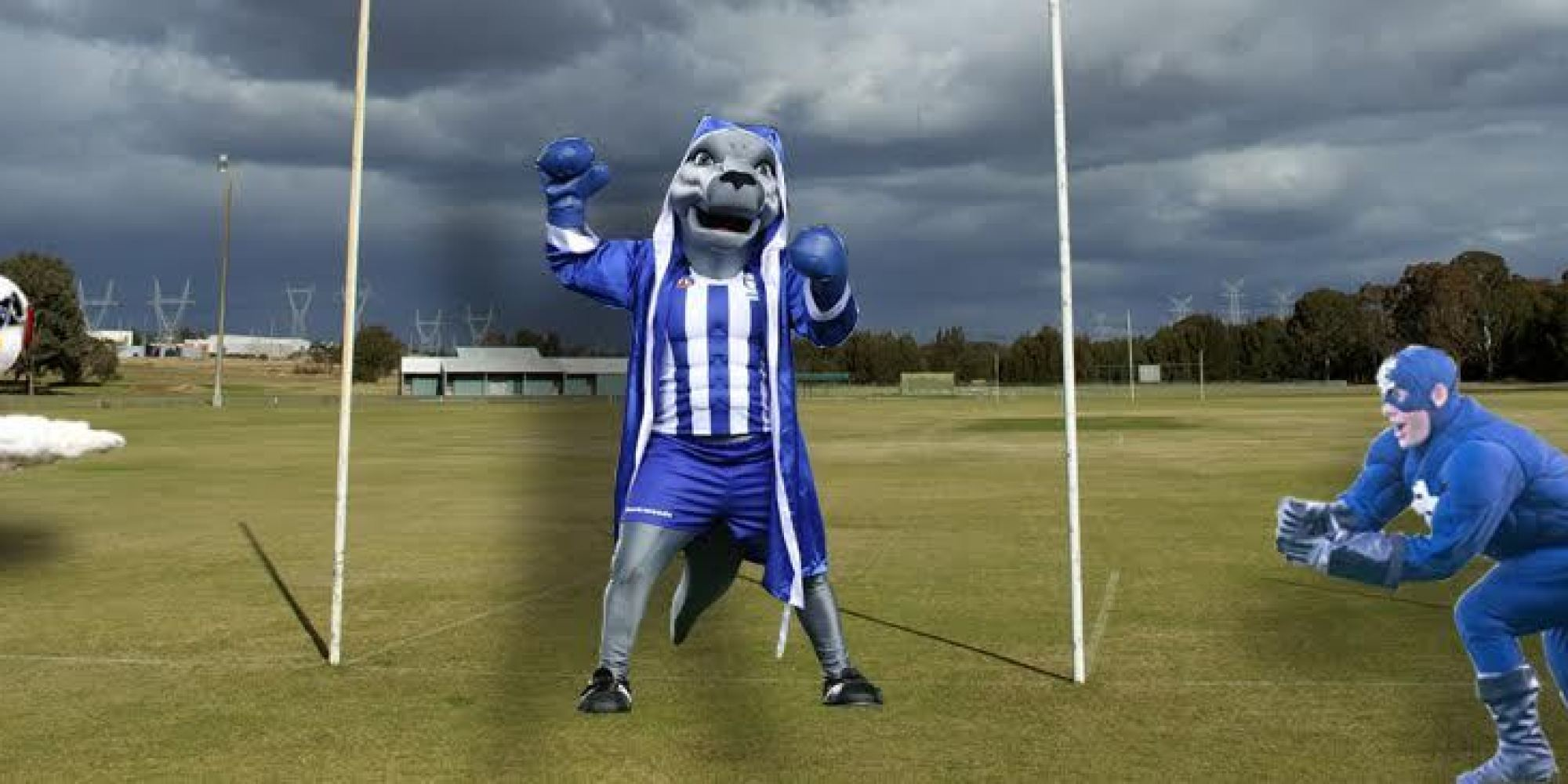 Afl Season 2016 We Rate The Club Mascots By Toughness