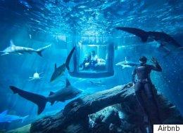 Airbnb vous propose de dormir avec les requins