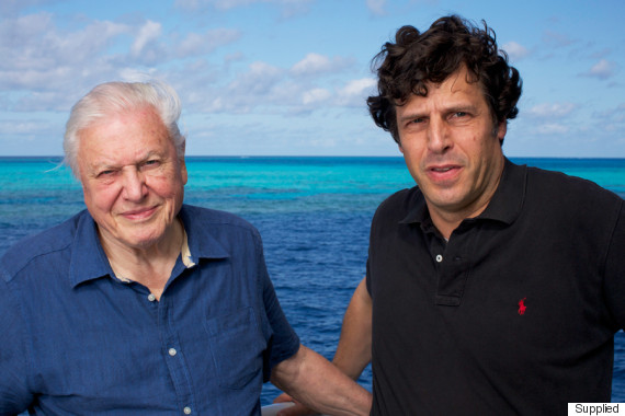 anthony geffen david attenborough great barrier re