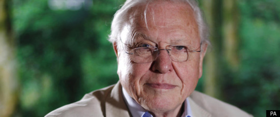 Sir David Attenborough Named Britain's 'Greatest Living ...