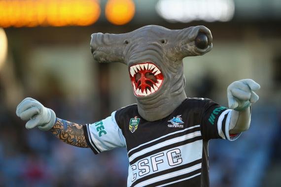 sharks mascot australia