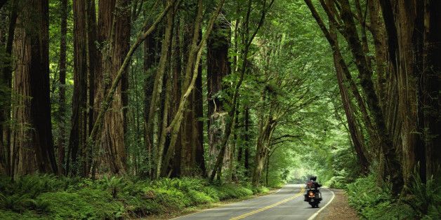 favourite roads