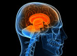 Transcranial Stimulation Shows Promise in Speeding Up Learning