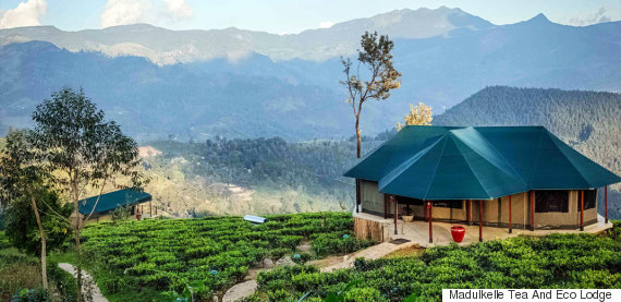 Sri Lanka's Best Kept Secret - Madulkelle Tea and Eco Lodge