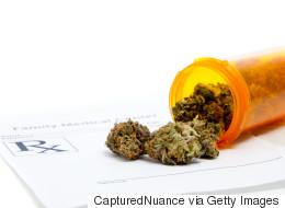 Protect Medical Marijuana Patient Rights In Bill 45 Debate