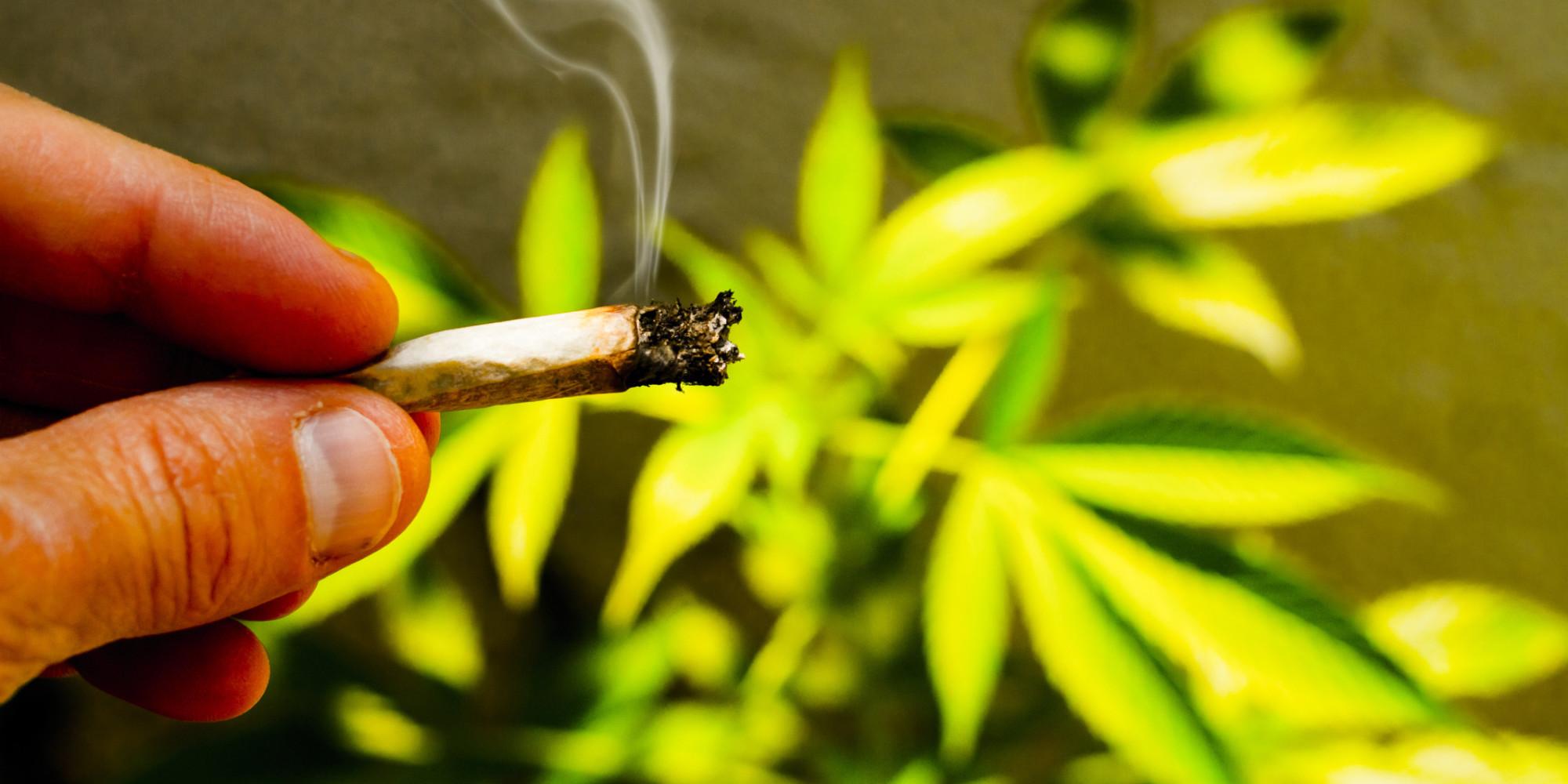 the dangers of legalising marijuana huffpost uk. Black Bedroom Furniture Sets. Home Design Ideas