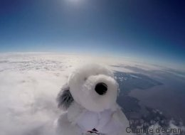 Un chiot en peluche disparaît dans l'espace (VIDÉO)