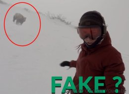 Cette vidéo d'une snowboardeuse poursuivie par un ours devient virale, Internet est sceptique