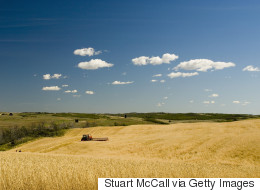 Average Farmland Prices In Canada Are Up 10%