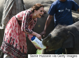 Kate Middleton Wears Topshop To Feed Baby Rhinos And Elephants
