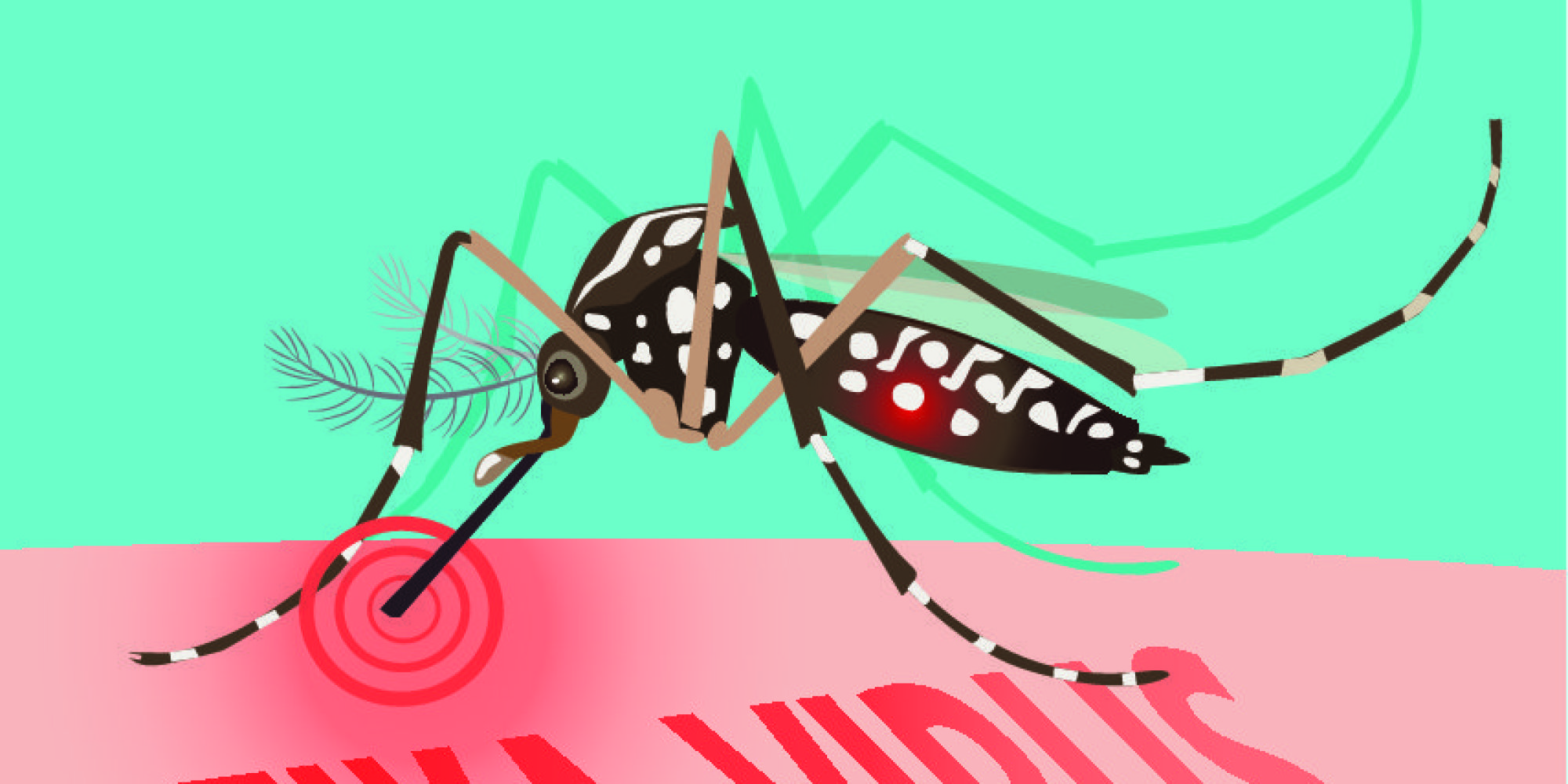 a short overview of the zika virus The council on foreign relations has posted a useful summary for environmental health professionals on recent zika virus developments this article, authored by laurie garrett, senior fellow for global health, is reposted with permission.