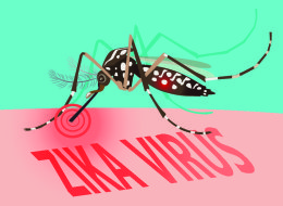 The ABC'S Of ZIKA