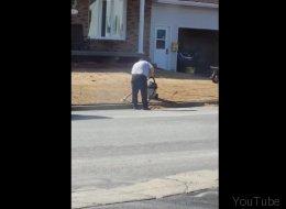 Cet homme doit probablement avoir la plus belle pelouse au Québec (VIDÉO)