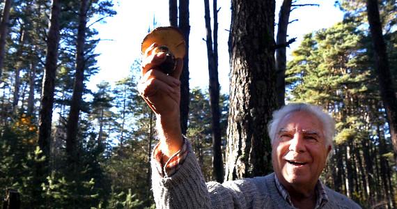 le potager de mon grand père