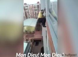 Il risque sa vie pour sauver un chien coincé sur un balcon (VIDÉO)