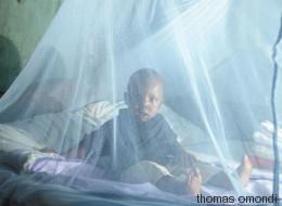 Warum wir mehr in den Kampf gegen Malaria investieren müssen