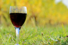 Glass of wine | Pic: Getty
