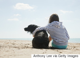 Stop Hugging Your Dog, Says Study