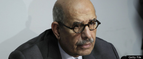 Mohamed Elbaradei Egypt Vote