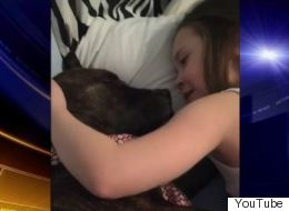 Girl Sings To Foster Dog, Makes Us Melt