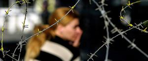 Nicosia Barb Wire