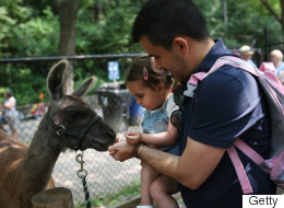 19 Free Things To Do In Toronto With Kids