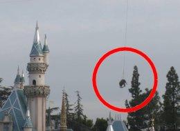 Dumbo en vrai, Disneyland l'a fait (VIDÉO)